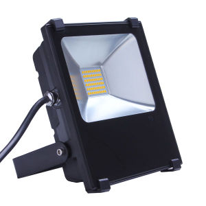 30W Flood Light pictures & photos