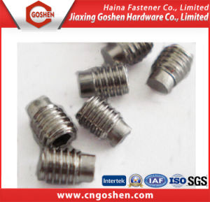 Hexagon Socket Set Screws with Dog Point pictures & photos