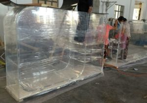 Special Shape Customized Acrylic Aquarium Tank pictures & photos
