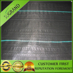 PP Plastic Ground Cover Fabric pictures & photos