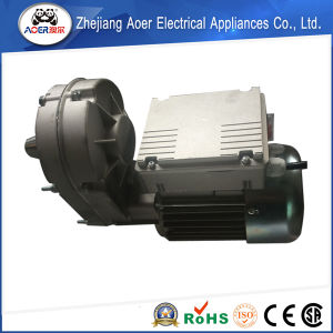 High Speed CE Certified Various Styles Torque Motor pictures & photos