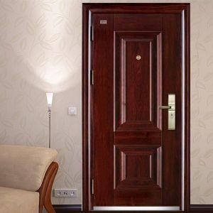 Classic Model Security Door pictures & photos