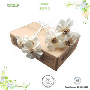 Ap 8cm Orchid Reed Diffuser Evaporate Sola Dry Flower pictures & photos