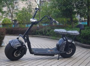 China Manufacturer 1000W Electric Bike with Bluetooth (JY-ES005) pictures & photos