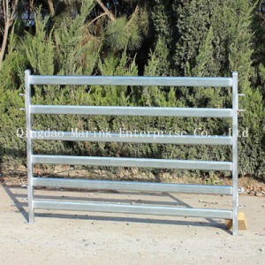 Galvanized Cattle Yard Fence with Low Price and Best Quality pictures & photos
