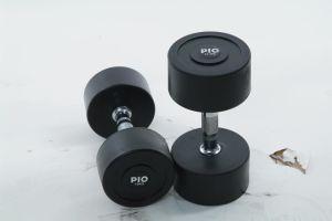 Fitnss Equipment Rubber Coated Dumbbell (AF450)