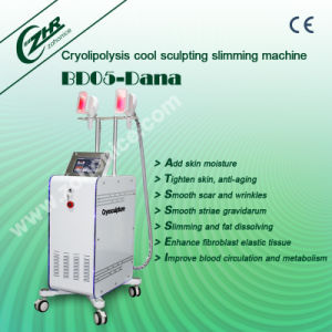 Cryolipolysis Vacuum Melt Fat Freeze Slimming Machine pictures & photos