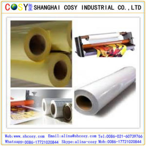 Glossy Cold Lamination Film for Protecting Picture and Printing with Good Quality pictures & photos