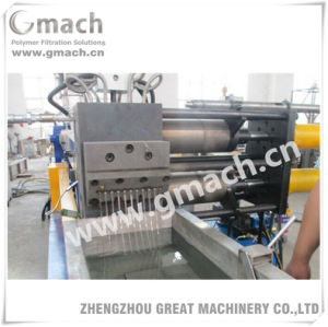 Parallel Twin Screw Extruder Continuous Screen Changer pictures & photos