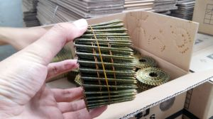 Coil Nails and Steel Nails From Factory pictures & photos