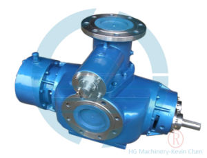 2W Series Twin Screw Pump pictures & photos