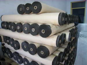 Fiberglass Woven Netting in Good Quality pictures & photos