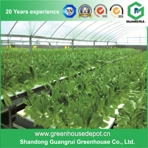 Garden Hydroponic Greenhouse Systems Tomato Greenhouse pictures & photos