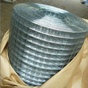 Galvanized/PVC Coated Welded Wire Mesh (factory) pictures & photos