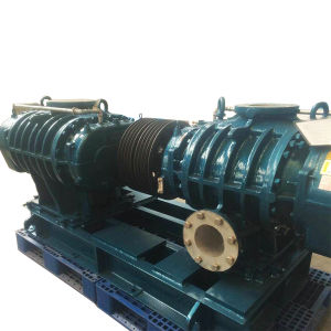 High Pressure Roots Air Blower pictures & photos