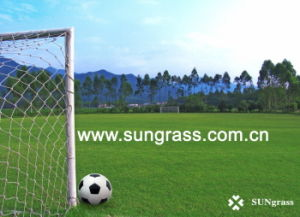 60mm Artificial Turf for Football/Soccer Field (JDS-STEM) pictures & photos