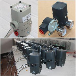 E to P Converter Manufacturer pictures & photos