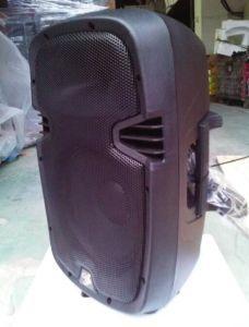 "Active 15"" PA Speaker Box/Plastic Speaker/Cabinet pictures & photos"