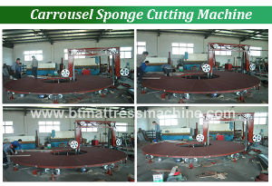 Automatic Carrousel Foam Cutting Machine pictures & photos