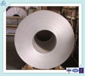 Aluminum/Aluminium Alloy Coil for Excursion Boat/Houseboat