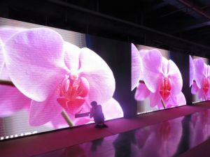 Rental LED Display for Stage Show (P8 SMD 3535 outdoor)