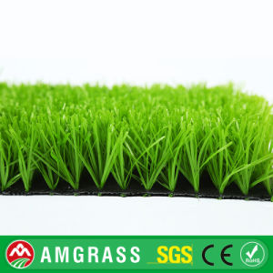 Football Artificial Lawn Grass with Best Quality and Cheap Price pictures & photos