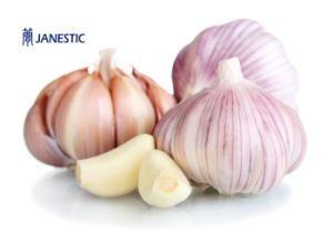 2017 New Crop Fresh Normal White Garlic From Shandong pictures & photos