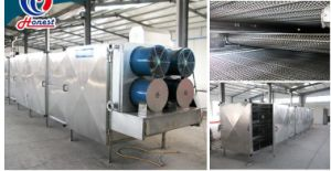 Food/Fruit/Vegetable Freeze Drying Machine pictures & photos