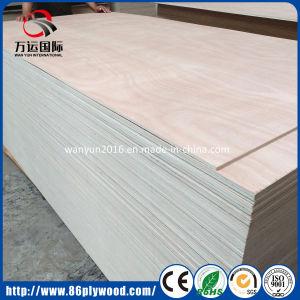 Furniture Grade Bintangor/Okoume/UV Birch/Pine/Poplar Commercial Plywood pictures & photos