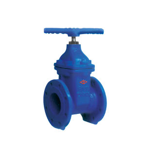 DIN Resilient Non-Rising Stem Ggg50 F4 Gate Valve with Ce