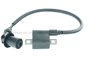 Ww-8306 Cg125 Motorcycle High Voltage Ignition Coil, 12V, pictures & photos