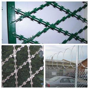 Hot Sale Razor Wire /Razor Wire with Competitive /Razor Wire Manufacturer /Concertina Razor Wire/Single Loop Razor Wire pictures & photos