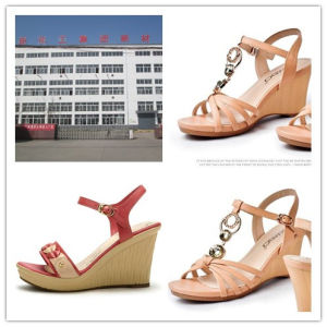 Polyurethane Materials PU Rein for Lady High Heels pictures & photos