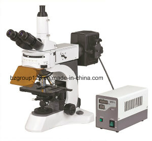 Upright Trinocular Fluorescent Laboratory Microscope pictures & photos