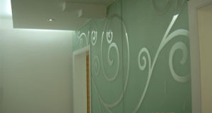 Tempered Acid Etched Glass for Home Decoration pictures & photos