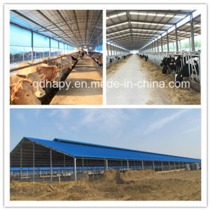 Hot Sale Livestock Prefab House Construction with Steel Structure pictures & photos