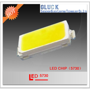 Good Color 0.5W SMD LED 5730 for Lighting