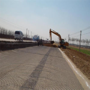 Road Reinforcement Plastic Geogrid Mesh pictures & photos