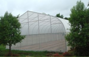 Agricultural Greenhouses Type Green House Anti Insect Netting pictures & photos