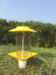 Solar or Electric Mosquito Killer for Indoor Outdoor Using pictures & photos