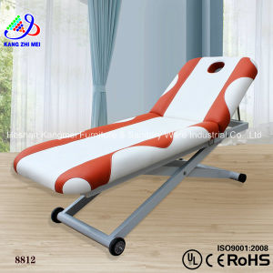 Beauty Salon Massage Facial Bed (8812)