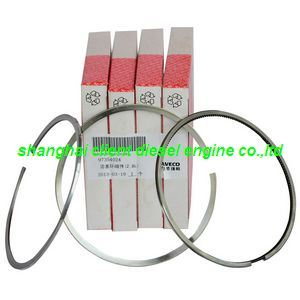 Daily Piston Ring for Iveco, 97354024 2992038 Spare PAR for Iveco pictures & photos