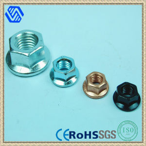 Hexagon Flange Nut (BL-0061) pictures & photos