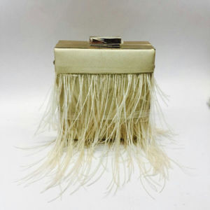 Smooth Feeling Silk Bag with Feather Eveningbag pictures & photos