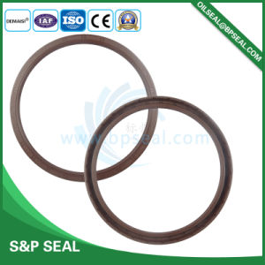 Double Lip Rotary Shaft Tc Oil Seal for Sale pictures & photos