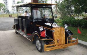 8 Seat Battery Power Electric Wedding Car pictures & photos