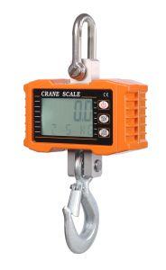100-1000kg Crane Scale