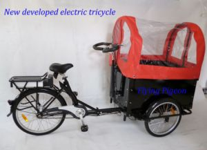 Big Load Capacity Electric Rickshaw Tricycle (FP-ERT003) pictures & photos