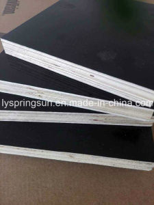 Building Construction Black Film Faced Plywood Sheet pictures & photos
