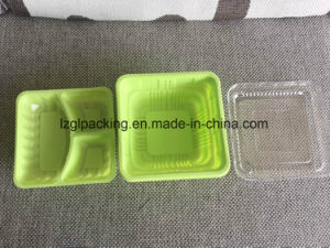 Food Packaging Undustry Use Disposable Plastic Take Away Fast Food Delivery Container Box pictures & photos